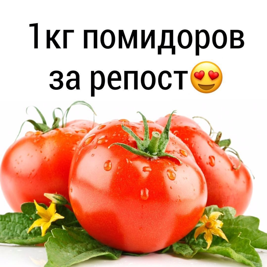 Крымский Дачник Интернет Магазин Каталог Товаров